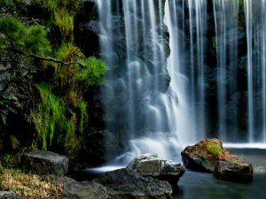 庭園 (Waterfall in Tokyo Garden, Japan)